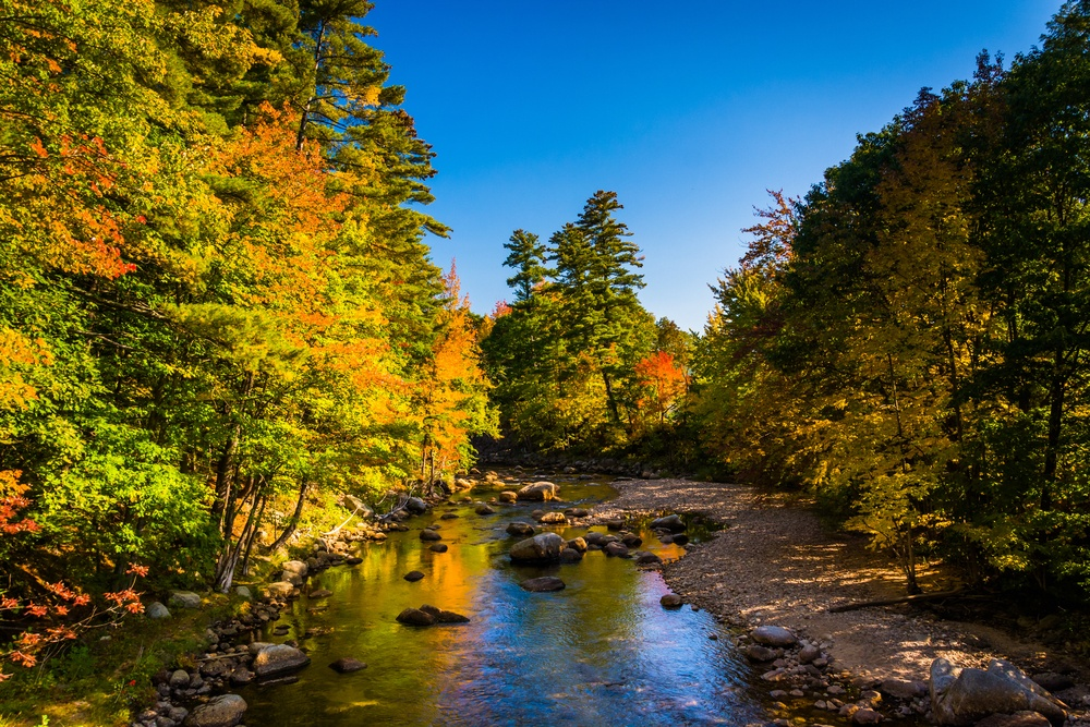 Early autumn color along the Swift River in Conway, New Hampshire..jpeg